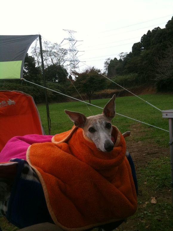 寒い日のキャンプ