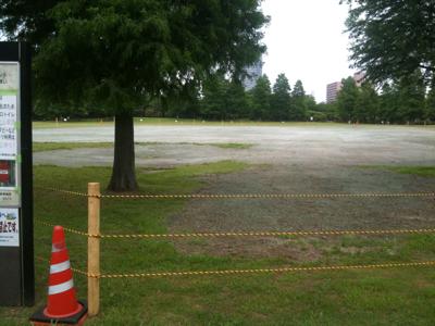 辰巳公園 液状化直し